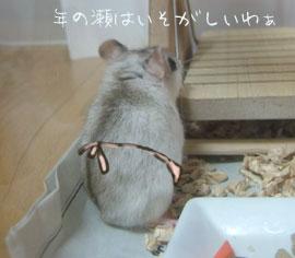 ちょっと猫村さん